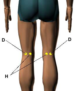 Acupressure Point Behind Knee