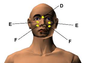 Acupressure Points for Relieving Acne, Pimple and Other ...