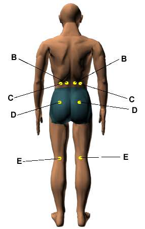 Acupressure Points for Relieving Lower Back Pain - HerbalShop