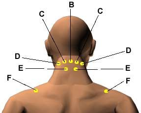 Acupressure Points for Relieving Neck Tension - HerbalShop