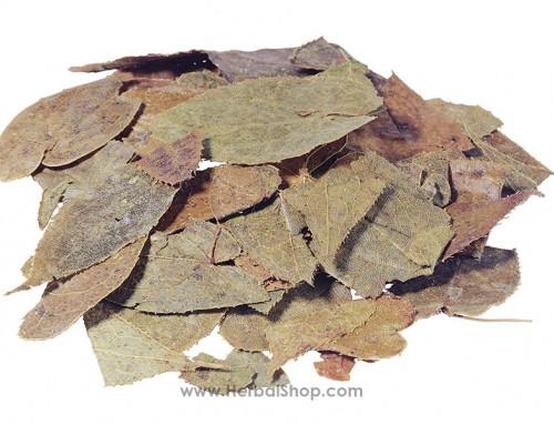 Epimedium -Horny Goat Weed (Yin Yang Huo)