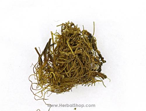 Asarum Herb (Xi Xin)