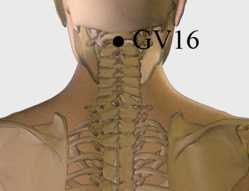 Acupressure Point GV16 (also known as DU-16)