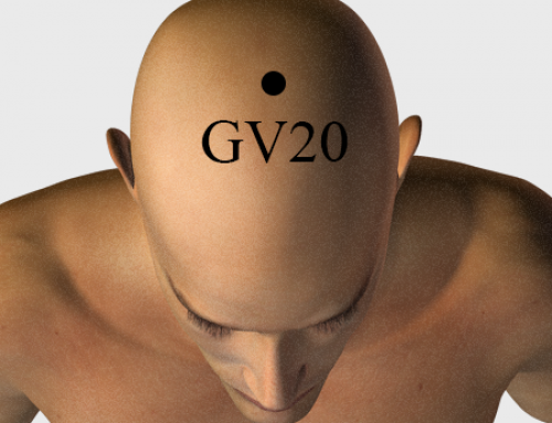 Acupressure Point GV20 (also known as DU-20)