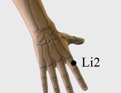 Acupressure Point LI2