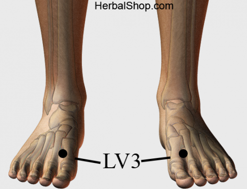 Acupressure Point LV3 (also known as  LIV 3)