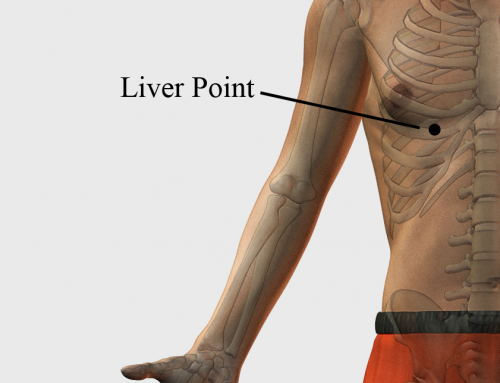 Acupressure Point Liver Point