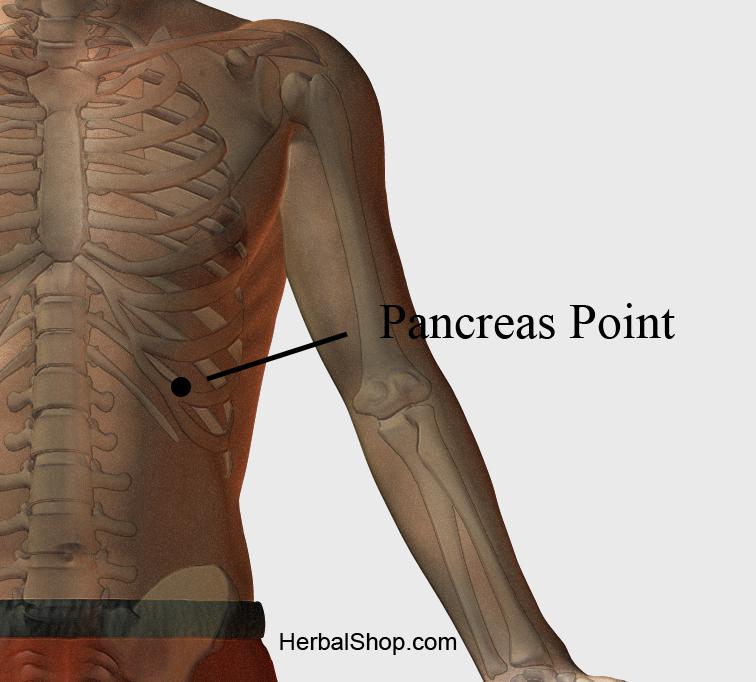 Acupressure Point Pancreas Point Herbalshop