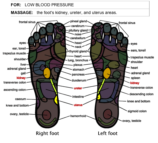 foot massage therapy  u2013 herbalshop