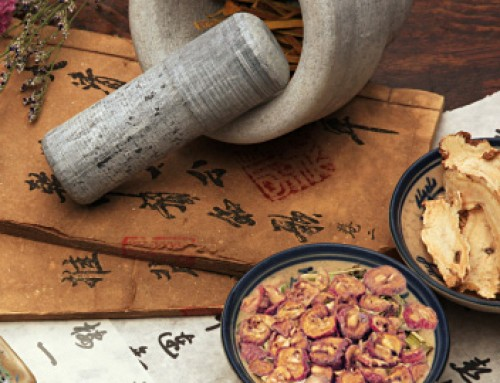 Art of Healing – About Traditional Chinese  Medicinal Herbs
