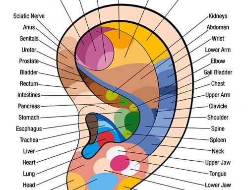 Free Downloadable Ear Massage Chart for Self Healing